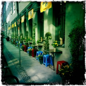 District Mot - viele Tische mit vielen Blumen